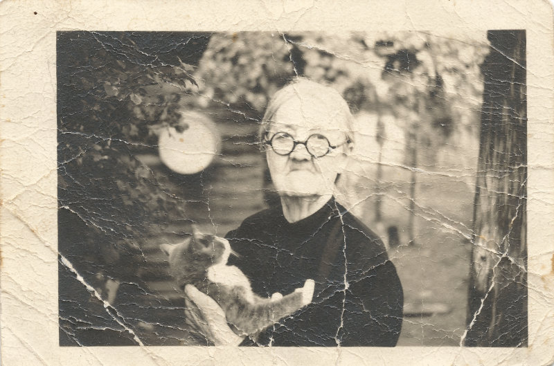 charity elizabeth goforth with a cat